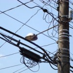 Problems paying for utilities like electricity